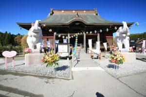 ぬいぐるみや人形の正しい供養の仕方 長福寿寺